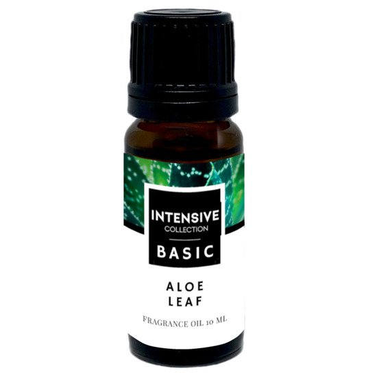 Intensive Collection Amber Basic fragrance oil in natural glass bottle 10 ml - Aloe Leaf